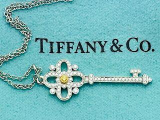 Tiffany & Co Platinum 18k Floret Key Pendand Necklace