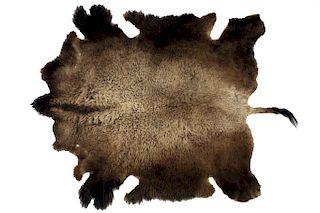 Montana Wild Buffalo Trophy Winter Fur Hide Rug