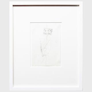 Joseph Beuys (1921-1986): Drawings for Codices Madrid by Leonardo da Vinci: Seventeen Plates