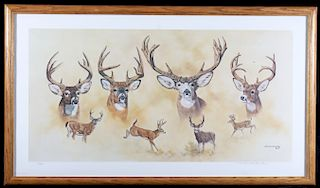 Signed Michael Schreck Deer Limited Edition Print