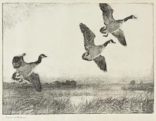 Frank W. Benson (1862-1951) Three Geese