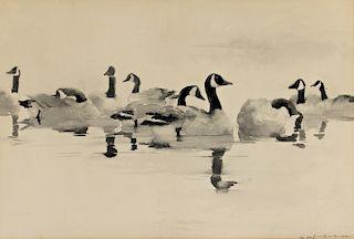 Frank W. Benson (1862-1951) Canada Geese