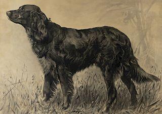 Percival Rosseau (1859-1937) Irish Setter