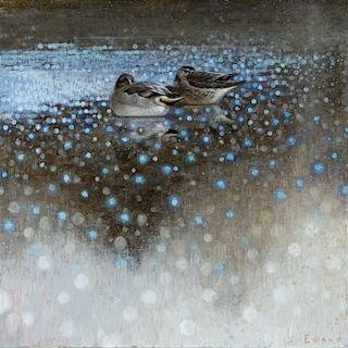 Ewoud de Groot (b. 1969) Resting Teal