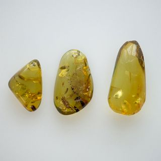 3 SUN SPANGLED FREE FORM POLISHED GREEN AMBER PIECES