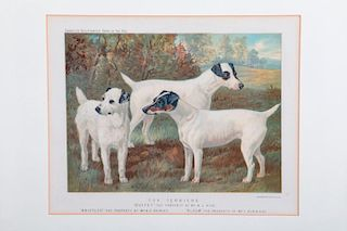 Five late 19th Century Lithographs, Vincent Brooks Day and Son LTD