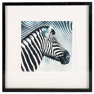 Three framed photographs of zebras.