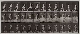 Eadweard Muybridge - Animal Locomotion: Plate 175 (Skipping Stones)