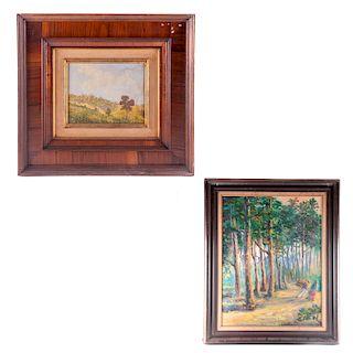 Lote de obra pictórica. Siglo XX. Consta de: Vista de paisaje boscoso. Óleo sobre tela. Enmarcado, otro. Piezas: 2