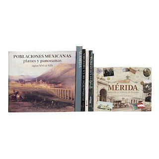 LOTE DE LIBROS DE MÉXICO  a)  Poblaciones Mexicanas Planos y Panoramas Siglos XVI al XIX. b) Alameda. Piezas: 7.
