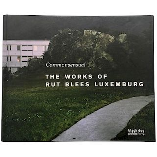 Rut Blees Luxemburg  Commonsensual, The Works of Rut Blees Luxembourg Book