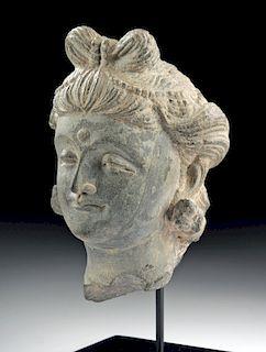 Gandharan Schist Head of Prince Siddhartha