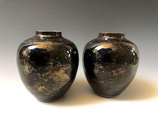 A PAIR OF CHINESE ANTIQUE BLACK GLAZED  VASES 19 CENTURY