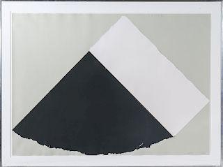 "Ellsworth Kelly ""Dark Gray and White"" Screenprint"