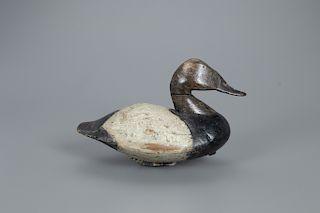 Canvasback Drake Decoy, Lee Dudley (1860-1942)
