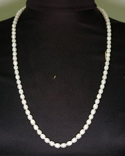 Freshwater 'Endless' Pearl Ladies Necklace