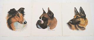 Group, 5 Canine Dog Litho's Arthur Kaplan 1960s