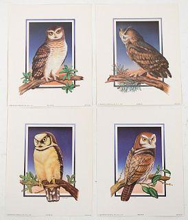 Group, 14 Aviary Owl Litho's Arthur Kaplan, 1960s