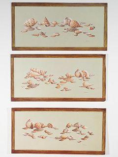 Group, Seven Seashell Lithographs, Arthur Kaplan