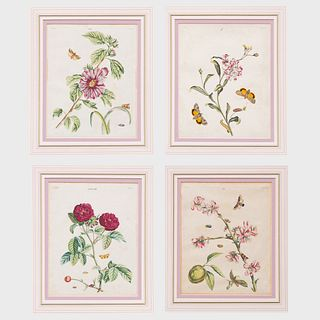 Benjamin Wilkes (?-1749): British Moths and Butterflies: Four Plates