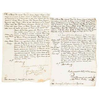 Primo de Rivera, Miguel. Marriage Licenses. México August 14th and 20th, 1772. Pieces: 2.