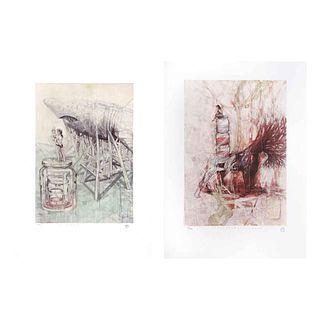 "ORLANDO DÍAZ, a) El cazador, b) Naturaleza vigilante, Signed and dated 2017, Serigraphs 28 / 33, 19.6 x 13.7"" (50 x 35 cm each), Pieces: 2"