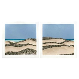 """ENRIQUE CATTANEO, Dunas II, Signed, Serigraphs 6 / 100 and 5 / 100, 18 x 18"""" (46 x 46 cm each), Pieces: 2"""