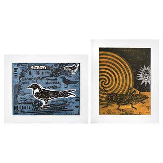 """FERNANDO ANTONIO CORTÉS MUÑOZCANO, Signed and dated 14 y 15, Aquatint 8 / 10 and P. A., 18.8 x 14.5"""" (48 x 37 cm), Pieces: 2"""