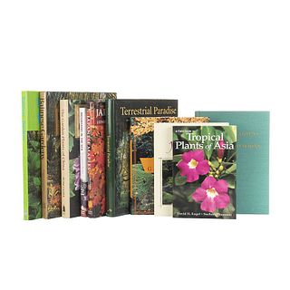 Gardens of Asia. Japanese Maples / The Garden of China / Terrestrial Paradise / Balinese Gardens / Persian Gardens... Pieces: 10.