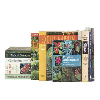 Tropical Gardens. The Subtropical Garden / The Tropical Garden / Plants for Tropical Landscapes / The Tropical Look... Pieces: 11.