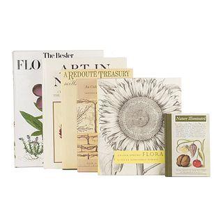 Books About Flowers. An Oak Spring Pomona / An Oak Spring Flora / A Redouté Treasury / A Nature Illuminated... Pieces: 6.
