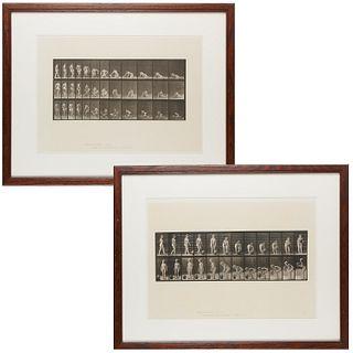 Eadweard Muybridge (after), photographic prints