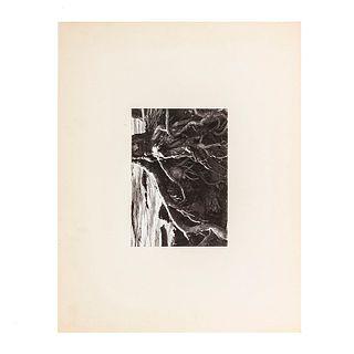 "Salas Portugal, Armando. Raíces de Árbol. Mexico. Black and white photographs. 6.6 x 9.4"" (17 x 24 cm). On paper. Propietor seal."