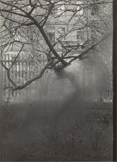 JOSEF SUDEK (1896–1976) Studio Window (from 'The Window of My Studio 1940-1952')