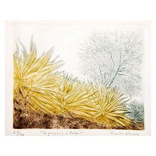 NICOLÁS MORENO, Magueyera y árbol, Firmado, Grabado 25 / 40, Enmarcado, 19 x 24 cm