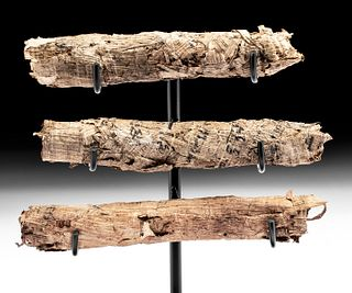 Rare Egyptian Ptolemaic Papyrus Scrolls (group of 3)