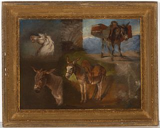 Early Oil of Horse and Donkeys