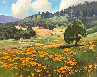 RAY ROBERTS, Springtime, California