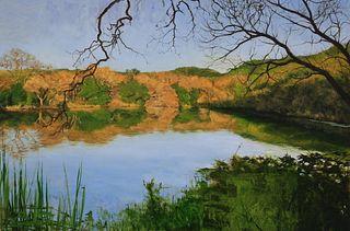 RYAN REYNOLDS, Napa Valley Marsh