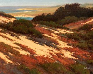 BRIAN BLOOD, Dunes Over Fanshell Beach