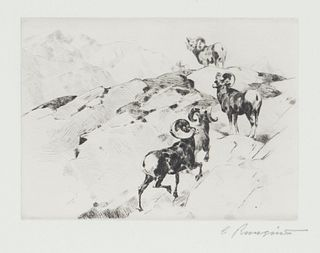 Carl Rungius (1869-1959) Alarmed
