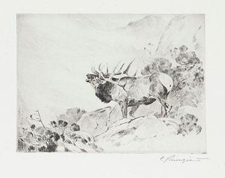 Carl Rungius (1869-1959) The Challenge