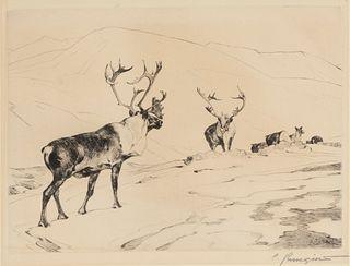 Carl Rungius (1869-1959) The Stranger