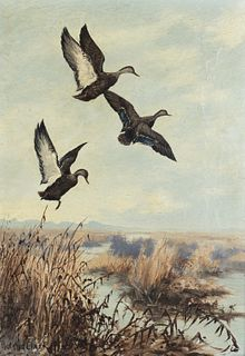 Roland Clark (1874-1957) Black Ducks