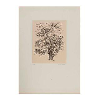 Nicolás Moreno. Árbol. Firmada a lápiz. Serigrafía 3/130. Sin enmarcar. 70 x 50 cm.