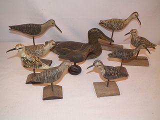 10 HARRY MONK BIRDS