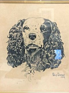 SIGNED AND DATED FRAMED  DRAWING OF A SPANIEL PHILLIP DUNCAN 1934