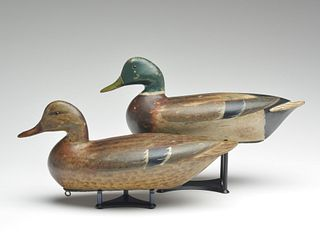 Rare early and slightly oversize pair of mallards, Charles Perdew, Henry, Illinois, circa 1928-1930.