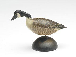 Miniature Canada goose, Elmer Crowell, East Harwich, Massachusetts.