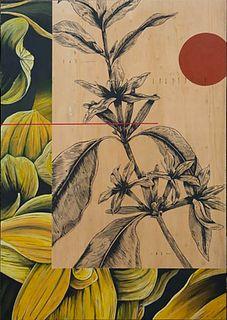 FABIO PETANI<br>(Pinerolo, 1987)<br>Lawrentio & Coffea Arabica, 2017